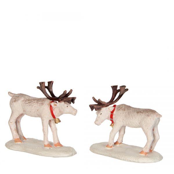 LUVILLE - Reindeer